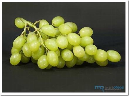 На самом деле, виноград можно есть только (!) людям со здоровой системой пищеварения.  Эта осенняя ягода достаточно.