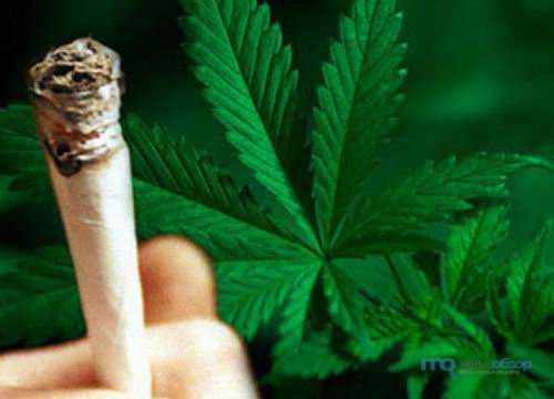 Действующее вещество марихуаны марихуана гашиш где купить