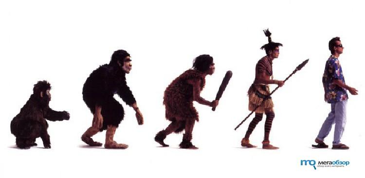 the evolution of neanderthals essay